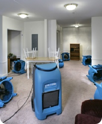 carpet dryers